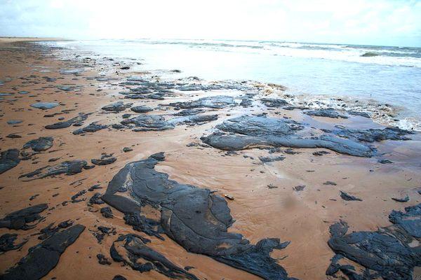 Manchas de óleo no litoral de Sergipe. Crédito: Governo de Sergipe
