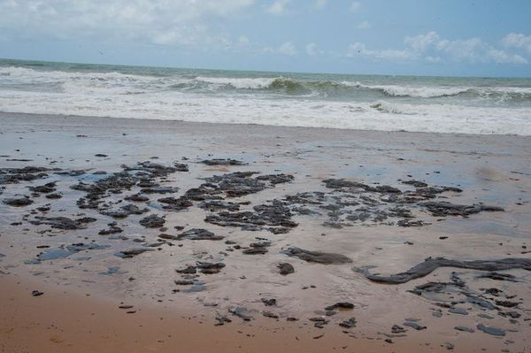 Mancha de óleo na praia do Nordeste. Crédito: Adema/Governo de Sergipe