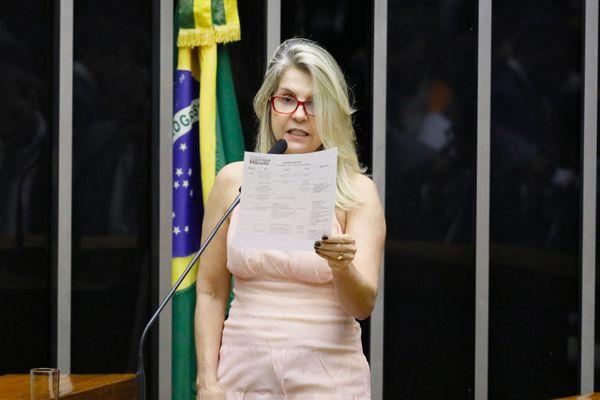Soraya Manato, deputada federal pelo PSL. Crédito: Luis Macedo|Câmara dos Deputados
