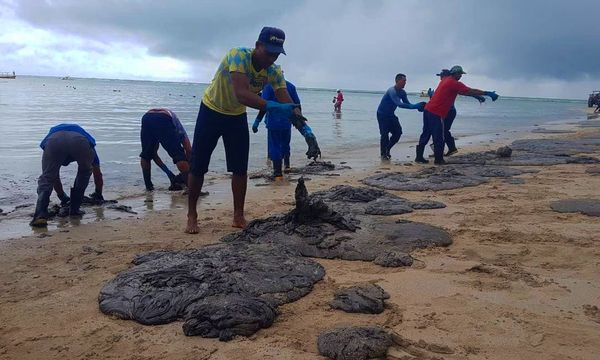 Manchas de óleo tomam conta da Praia dos Carneiros, no litoral pernambucano . Crédito: Clemente Coelho Júnior/Instituto Bioma Brasil