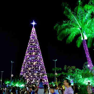 Data: 08/11/2019 - ES - Serra - Árvore de Natal no Parque da Cidade, na Serra - Editoria: Cidades