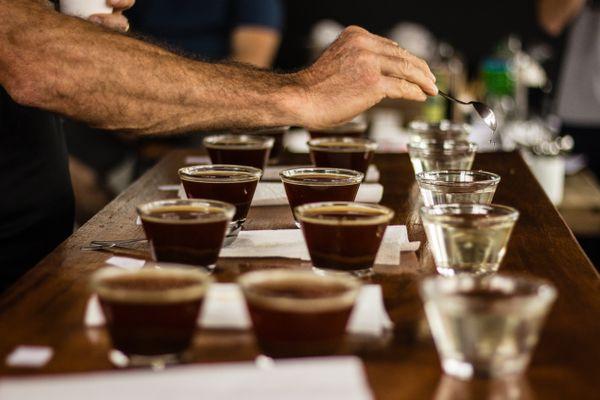Cupping: prova de amostras garante uniformidade do lote. Crédito: Carivia Fotos/Divulgação