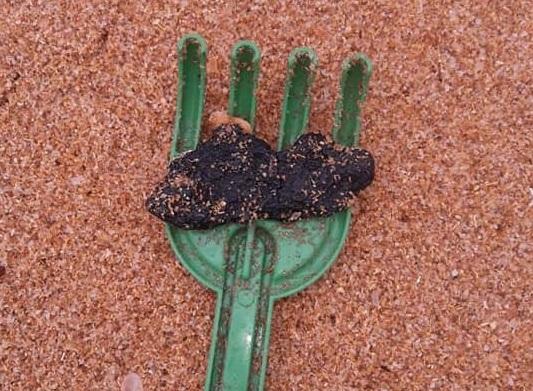 Fragmento de óleo em praia de Fundão, na Região Metropolitana de Vitória. Crédito: Divulgação / Secretaria de Meio Ambiente de Fundão