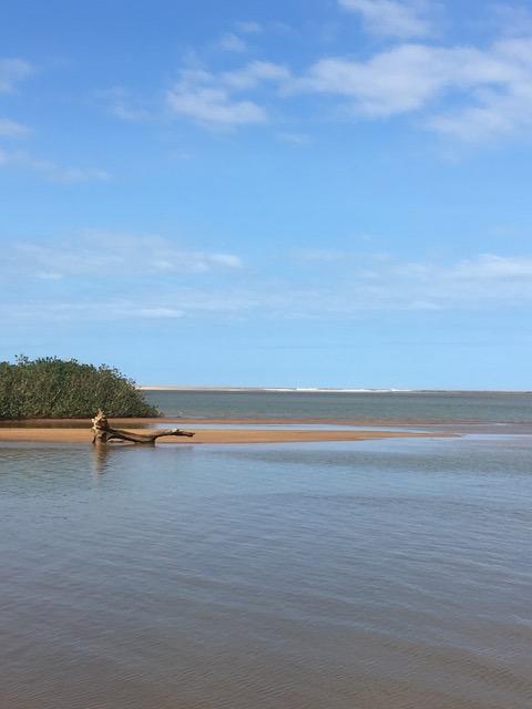 Estuário do Rio Doce: apesquisa é resultado do monitoramento da vida no local onde o rio se encontra com o mar, em Regência, Linhares. Crédito: Ângelo Bernardino