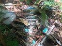 Lixo hospitalar é encontrado em terreno baldio do bairro Córrego Sete, em Vila Velha . Crédito: Patrick de Oliveira/Divulgação