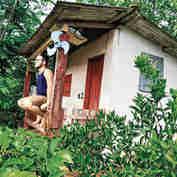 O laboratório de ciência de Kaio Littike é cercado pelo cafezal em São Domingos do Norte