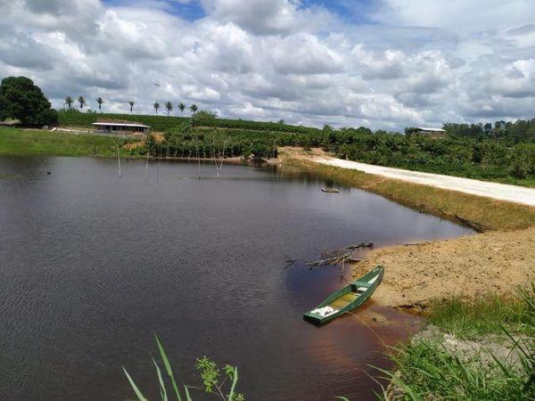 Barragem abastecida pelas recentes chuvas no Distrito de Farias, interior de Linhare. Crédito: Franco Fiorot