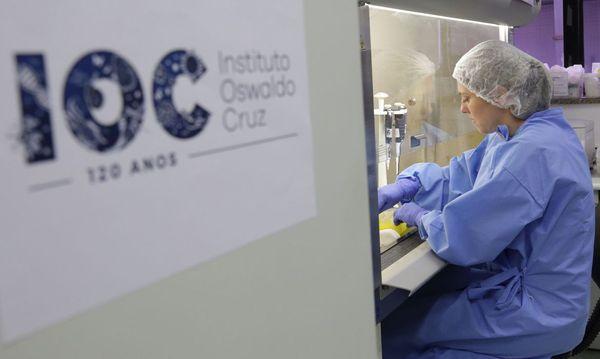 Casos estão sendo analisados pelaFundação Oswaldo Cruz (Fiocruz). Crédito: Divulgação | Josué Damacena | IOC/Fiocruz