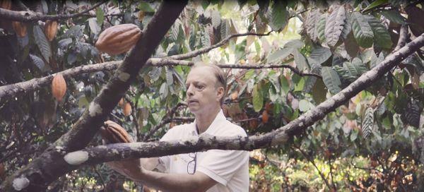 Produtor Emir de Macedo Gomes cultiva cacau em Linhares. Crédito:  Lucas Araujo/Reprodução/Somos Capixabas