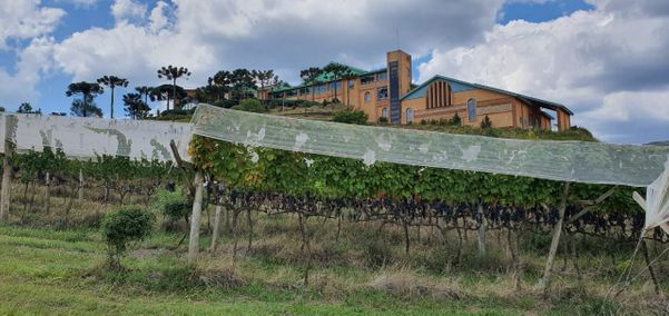 Vinícola Villa Francioni. Crédito: Luiz Cola