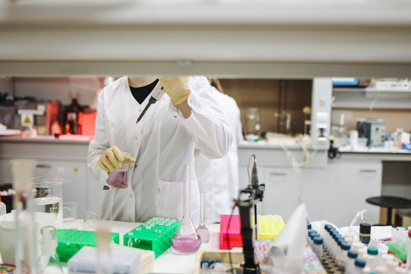Cientista estuda o novo coronavírus