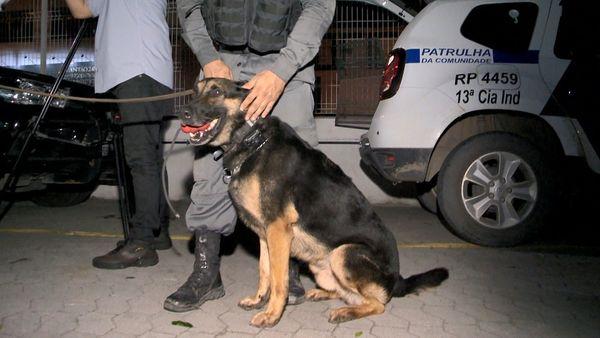 Cão da Polícia Militar, Jaffá, encontra droga dentro de casa de Vila Velha