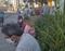 Pessoas esperam em pé ou sentadas em muretas, do lado de fora da Farmácia Cidadã de Vitória, para serem atendidas. Crédito: Graciana