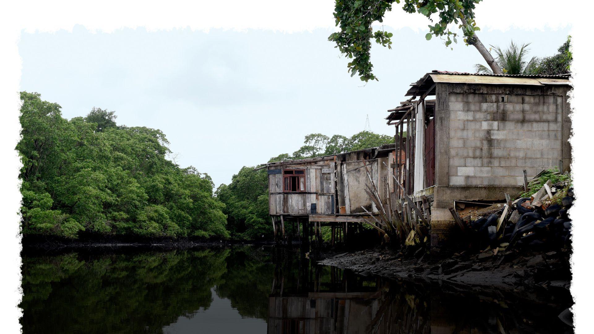Palafitas invadem área de mangue, em Maria Ortiz, Vitória