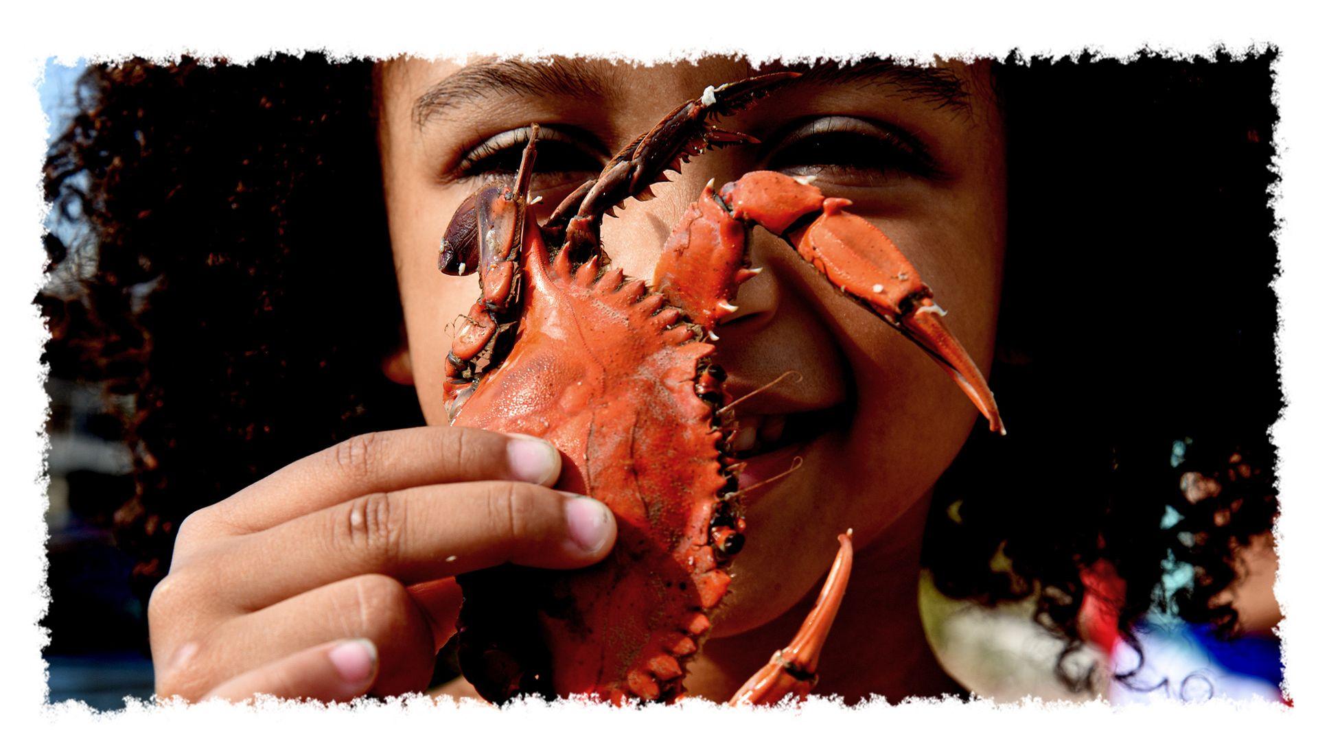 Criança , moradora da Ilha das Caieiras, em Vitória, exibe orgulhosa o siri que veio do mangue