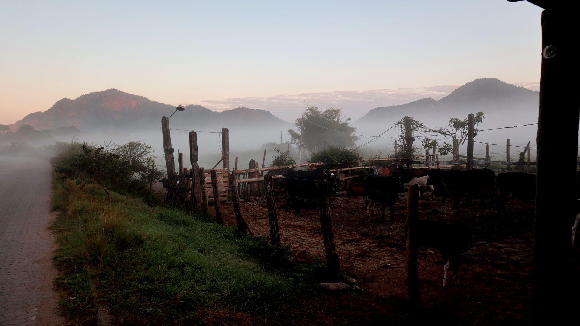 Data: 09/06/2020 - ES - Serra - Gilven Antônio Piazzollo, produtor rural retirando leite para vender - Editoria: Cidades - Foto: Ricardo Medeiros - GZ