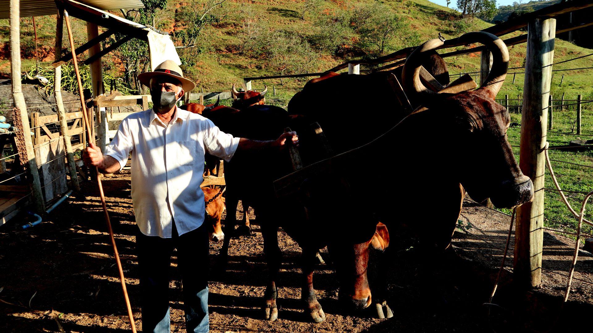 josé Miguel Fonseca, produtor rural