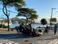 Carro capota na Curva do Saldanha. Crédito: Leitor | WhatsApp