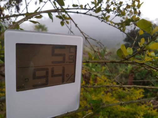 Termômetro marcou 5° nesta segunda (22), em Domingos Martins