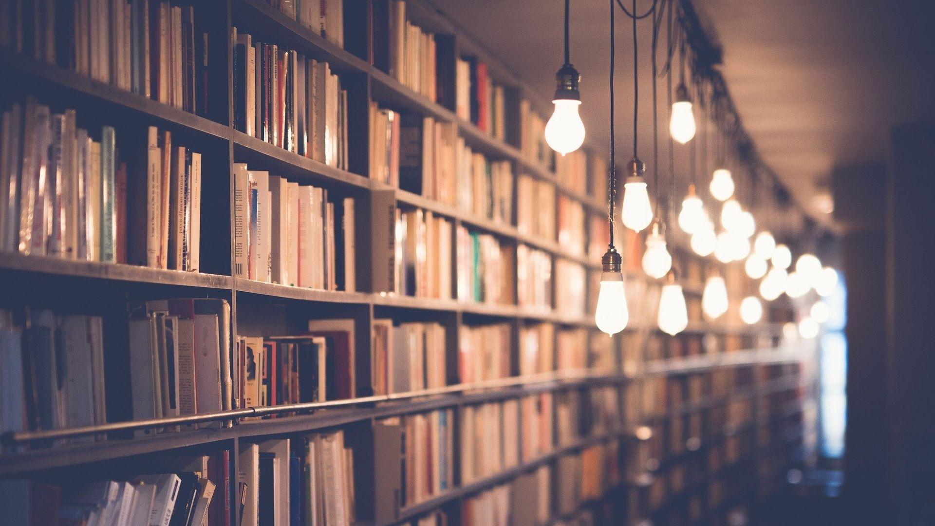 Livros podem ser lidos de muitos modos, seja qual for sua textura, seu cheiro, seu estado, suas cores, seu volume, seu peso (tudo isto está lá, é parte da experiência de nossos sentidos)