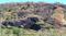 Incêndio aconteceu na localidade Santa Cruz, zona rural do município de Muniz Freire. Crédito: Divulgação/ PMA