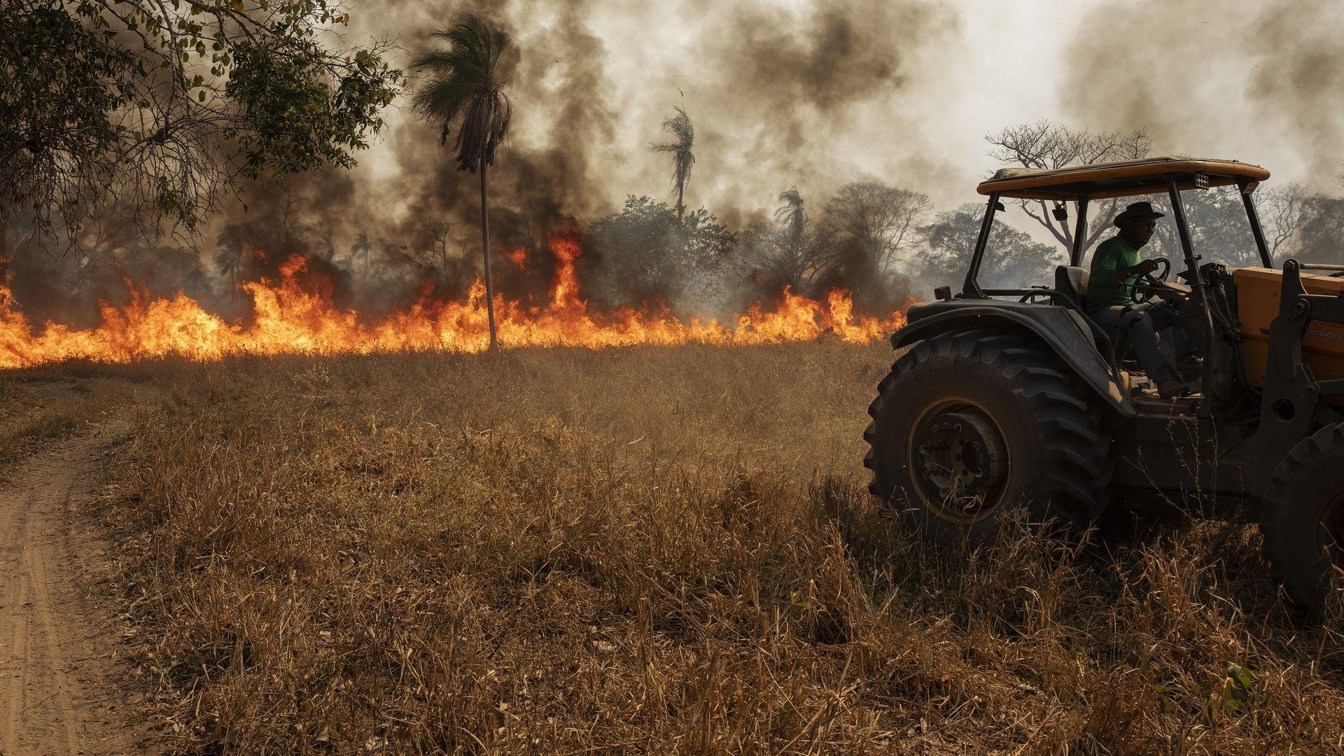 ***ARQUIVO***BARÃO DE MELGAÇO, MT, 13.08.2020- Trator faz aceiro para tentar o conter o fogo em um pasto da Fazenda São Francisco do Perigara, em Barão de Melgaço, Mato Grosso. (Foto: Lalo de Almeida/Folhapress)