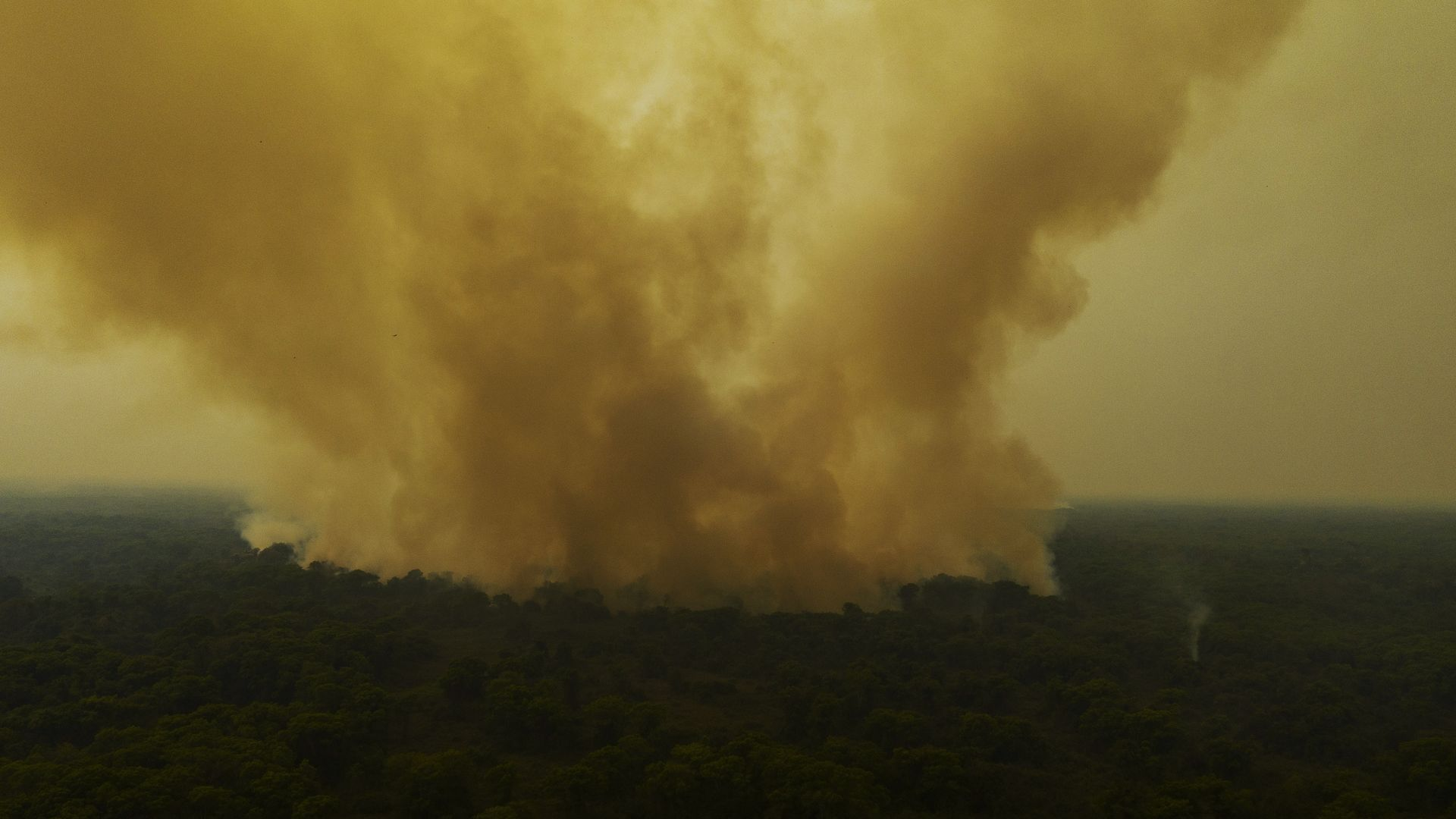 POCONE, MT, 07.09.2020 - QUEIMADA-PANTANAL - Vegetação é consumida pelo fogo ao longo da rodovia Transpantaneira, no Mato Grosso. O Pantanal foi o bioma mais atingido proporcionalmente pelas queimadas esse ano, com quase 10% de sua área consumida pelo fogo. (Foto: Lalo de Almeida/Folhapress)