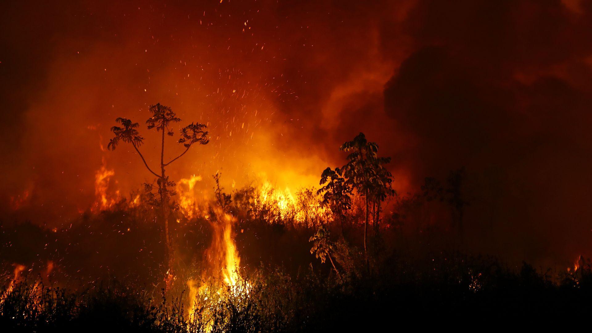 A fumaça de um incêndio sobe no ar enquanto as árvores queimam entre a vegetação no Pantanal, a maior área úmida do mundo, em Pocone, estado de Mato Grosso, Brasil, 3 de setembro de 2020. REUTERS / Amanda Perobelli