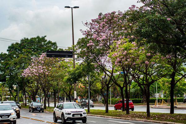 Avenida Nossa Senhora dos Navegantes, Enseada do Suá tyv31top