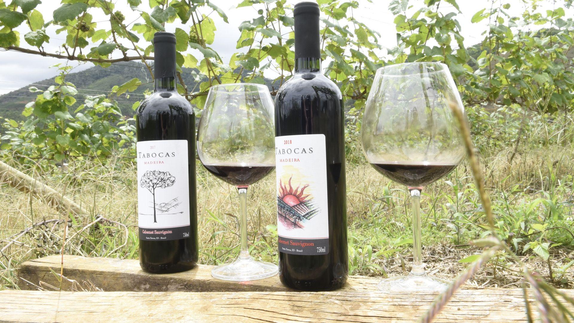 Vinícola Taoca. Produção de vinho em Santa Teresa. Primeira vinícola a elaborar vinho fino, o Tabocas