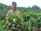 Luiz Ricardo Bozzi Pimenta de Sousa, de 20 anos, produtor de café em Venda Nova do Imigrante. Crédito: Divugação/BSCA