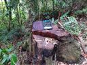 Além de ser conduzido para delegacia, ele foi multado em R$ 15 mil pelo Instituto de Defesa Agropecuária e Florestal do Espírito Santo (Idaf).