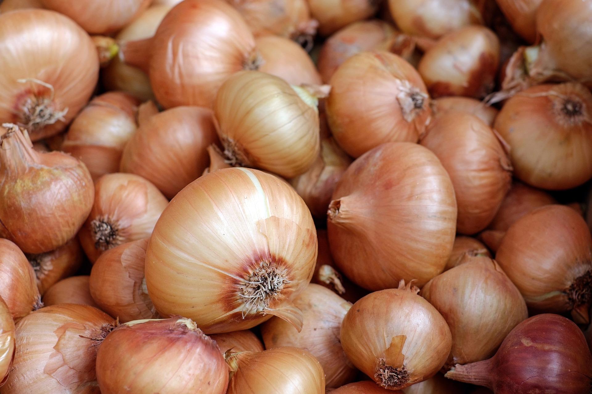O Procon de Vitória divulgou uma pesquisa comparativa de preços relacionados à Páscoa, em 2021. Produtos como a cebola podem ser encontrados em marcados da capital sendo comercializados por uma diferença de preços de 100%. Crédito: Pixabay