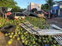 Caminhão carregado com coco tomba em avenida de Linhares