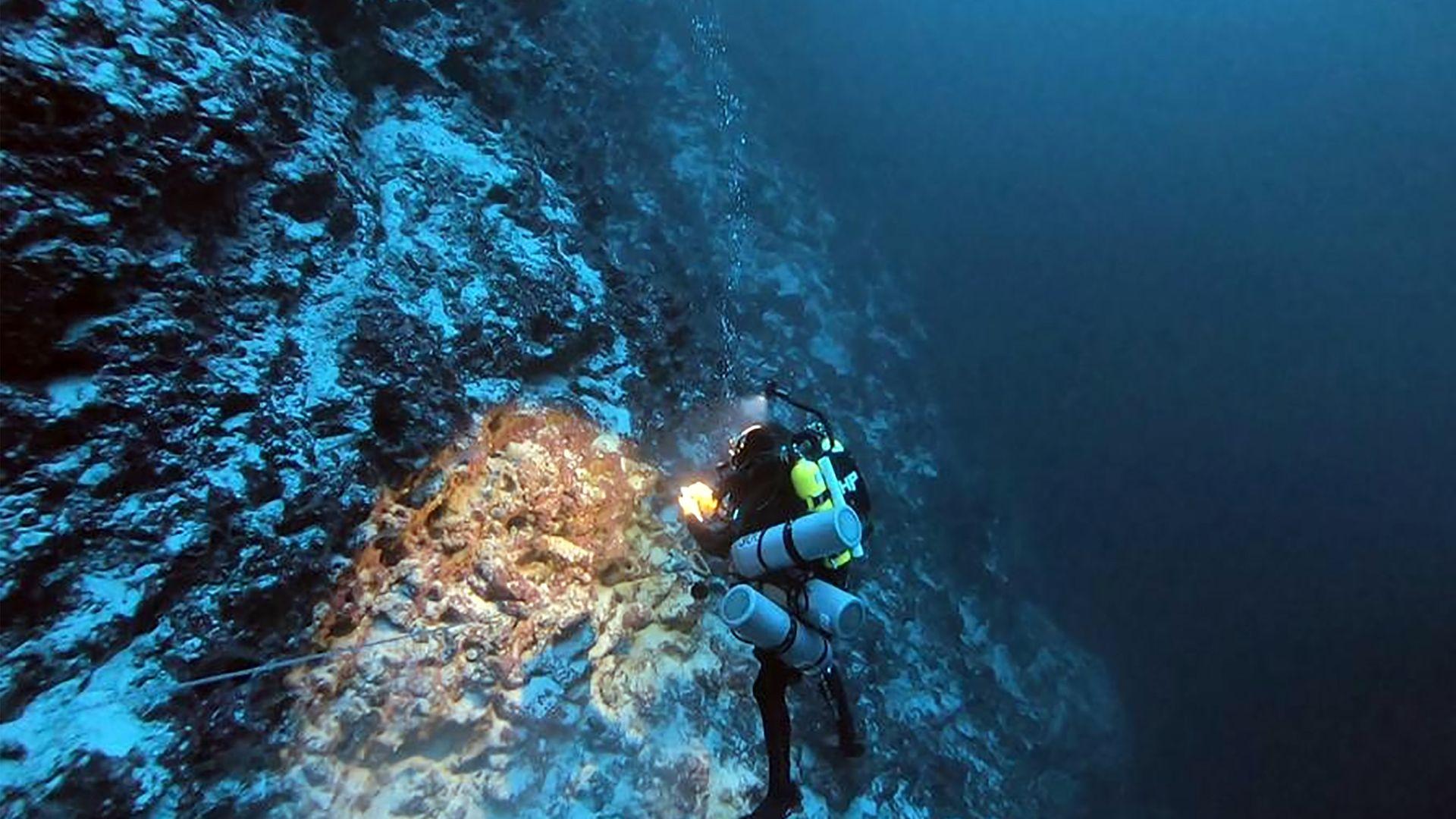 Um dos mergulhadores da equipe explorando um recife mesofótico  (de média luminosidade) em Fernando de Noronha