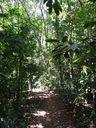 Diferente de muitos pontos turísticos do Estado, a trilha para chegar na pedra O Frade e a Freira, é curtinha e de fácil acesso. O restante do caminho pode ser feito de carro