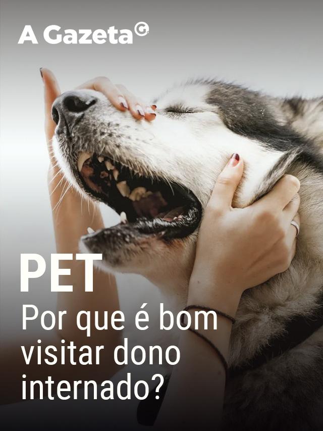 Estudos mostram que visitas de cachorros e gatos a seus tutores enfermos trazem benefícios. Confira.